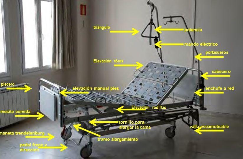 Partes De Una Camilla Con Ruedas De Hospital Cama De Hospital Diseño Curricular Hospital