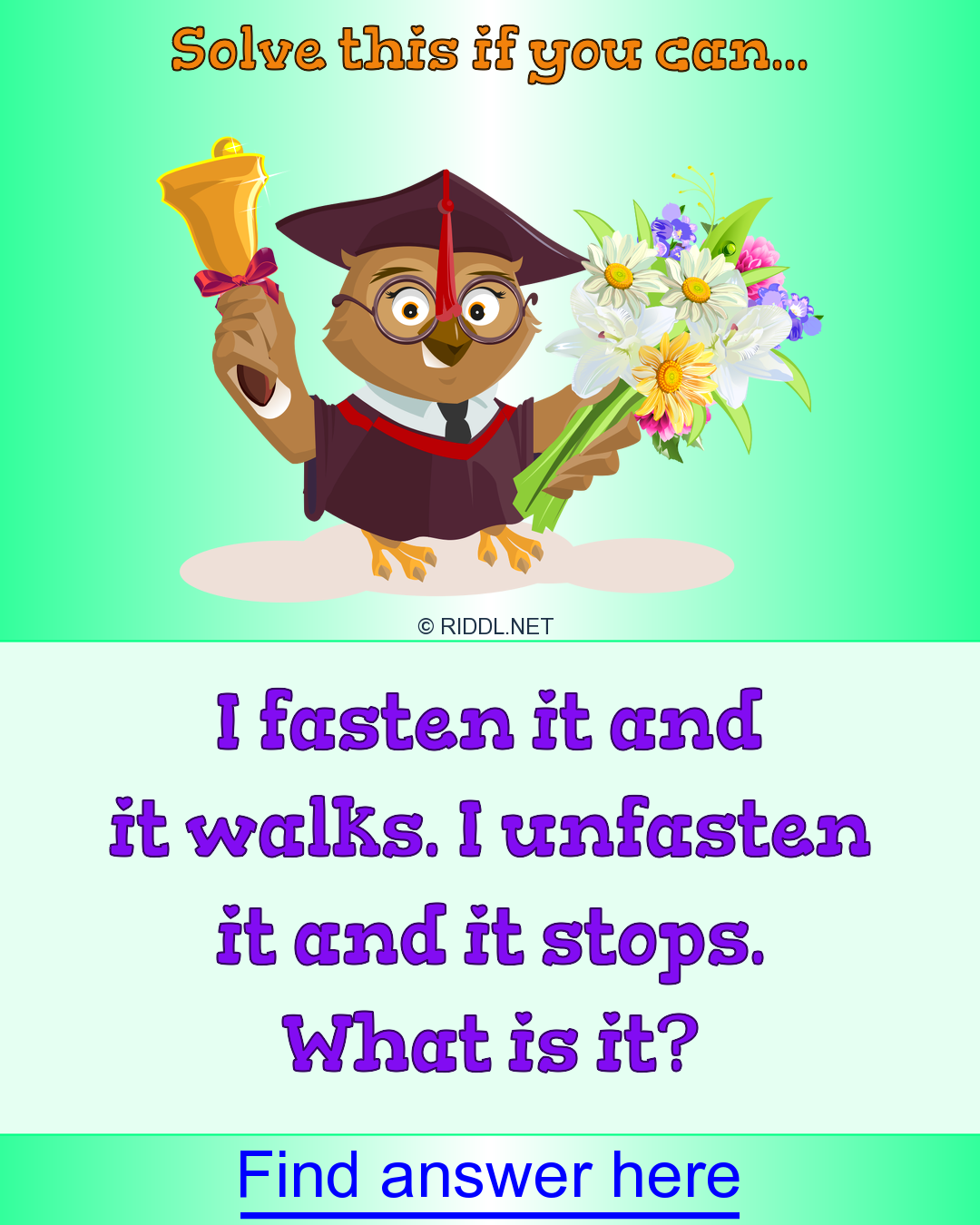 Please solve this if you can! in 2020 Funny riddles