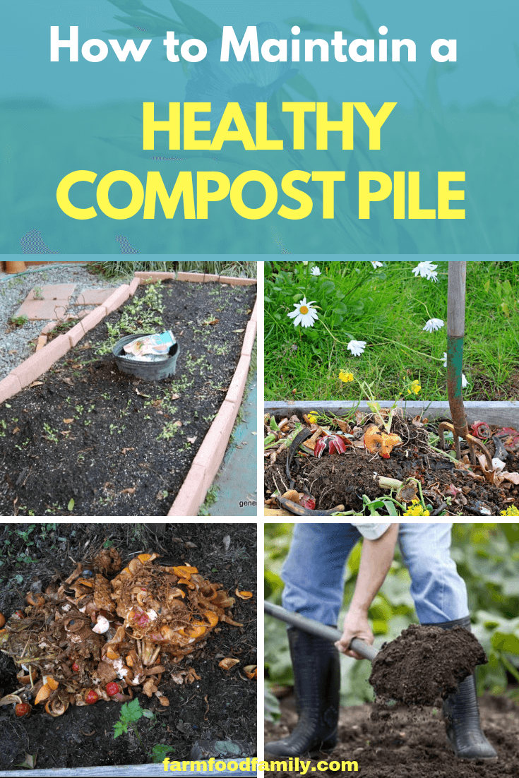 3 Easy Tips For Productive Composting Compost Garden Compost