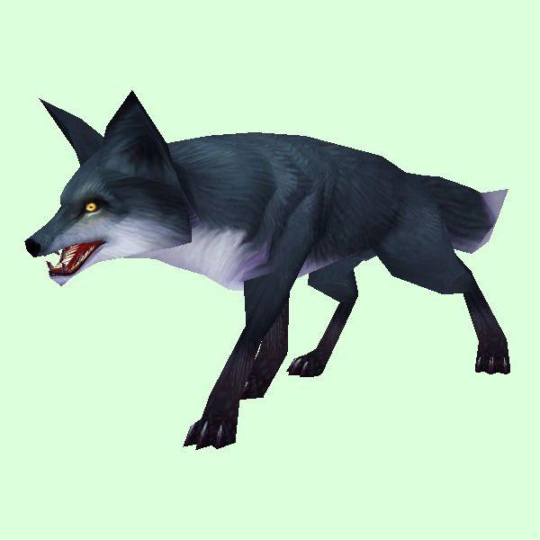Petopia Black Fox Animals wild, Pets, Animals