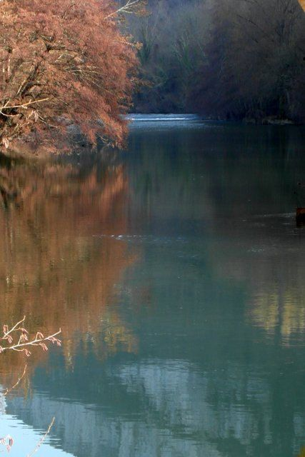 Spring reflexion fine art print photography by CoinBleu on Etsy, $28.00