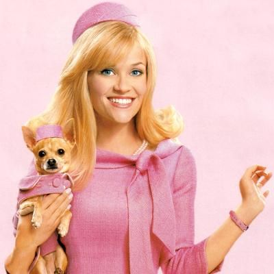 University of Toronto's Rotman School of Management gives MBA students sexist case study reminiscent of 'Legally Blonde' - Bizwomen