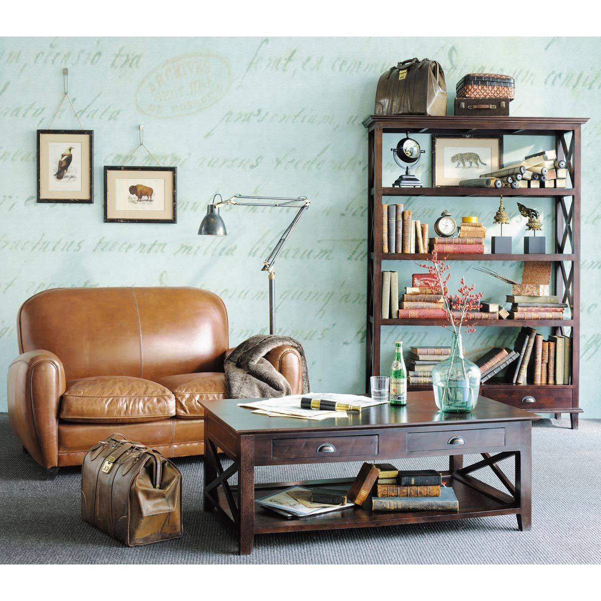 Conjunto de 5 cuadros con marco Historia natural   For the Home ...