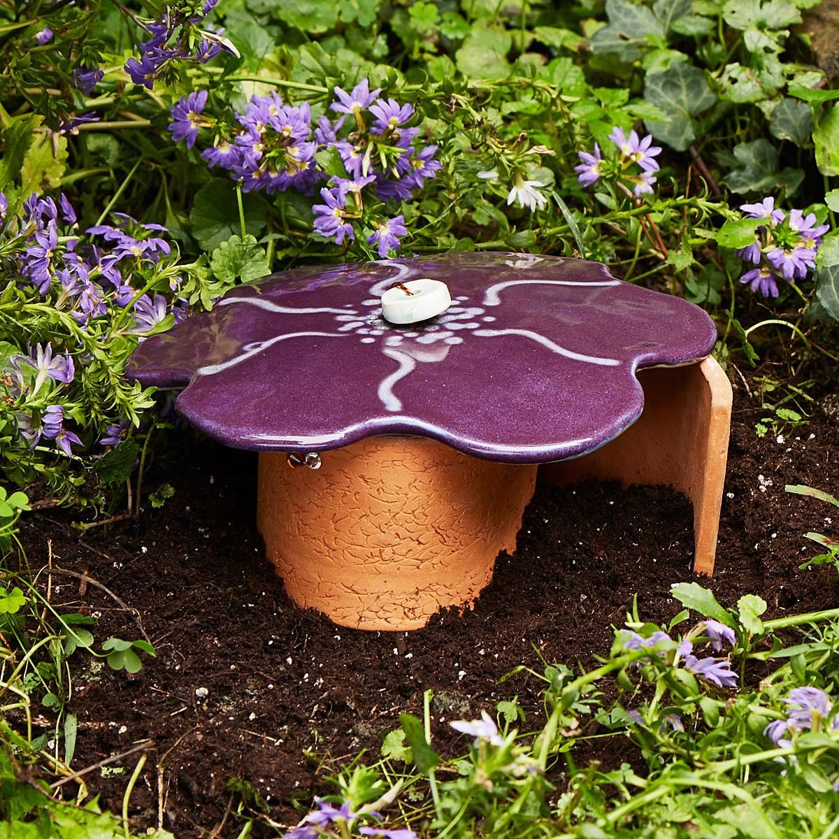 Blossom Toad House