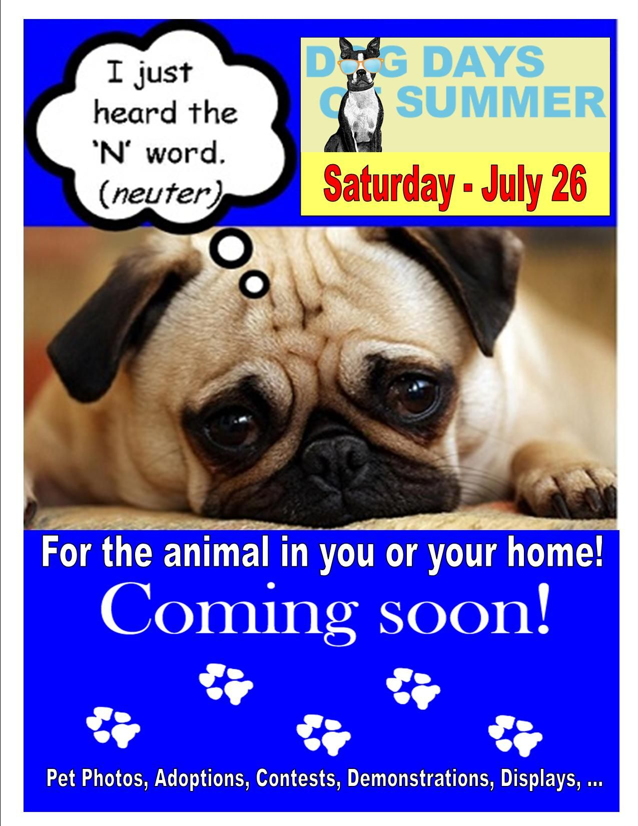 Plan To Attend The Cedar Mall S Dog Days Of Summer Pet Celebration July 26th Pets Fun Events Dog Days