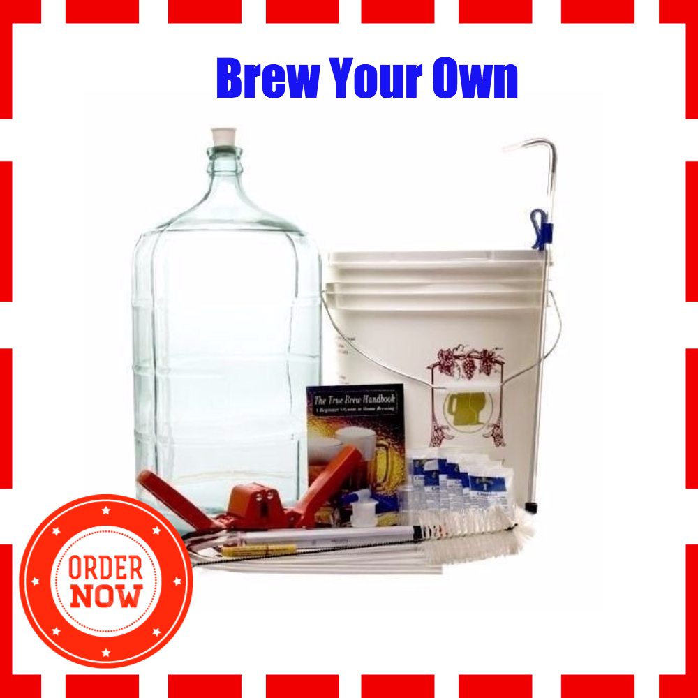 BSG Gold DP-GFZY-7I2K Beer Homebrew Kit with 6 Gallon Glass Carboy ...