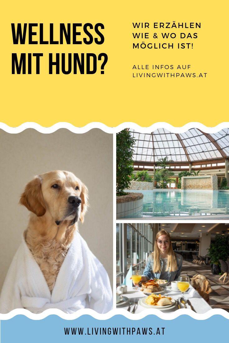 Thermenurlaub mit Hund Gotthard Thermenhotel Hunde