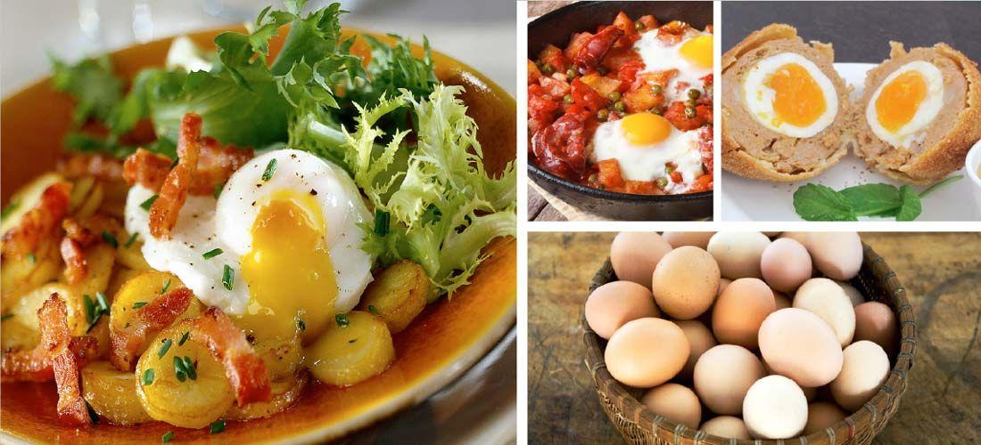 Recetas creativas con huevo: ¡a desayunar!