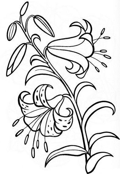 Раскраски цветы | Цветочные раскраски, Рисунки цветов и ...
