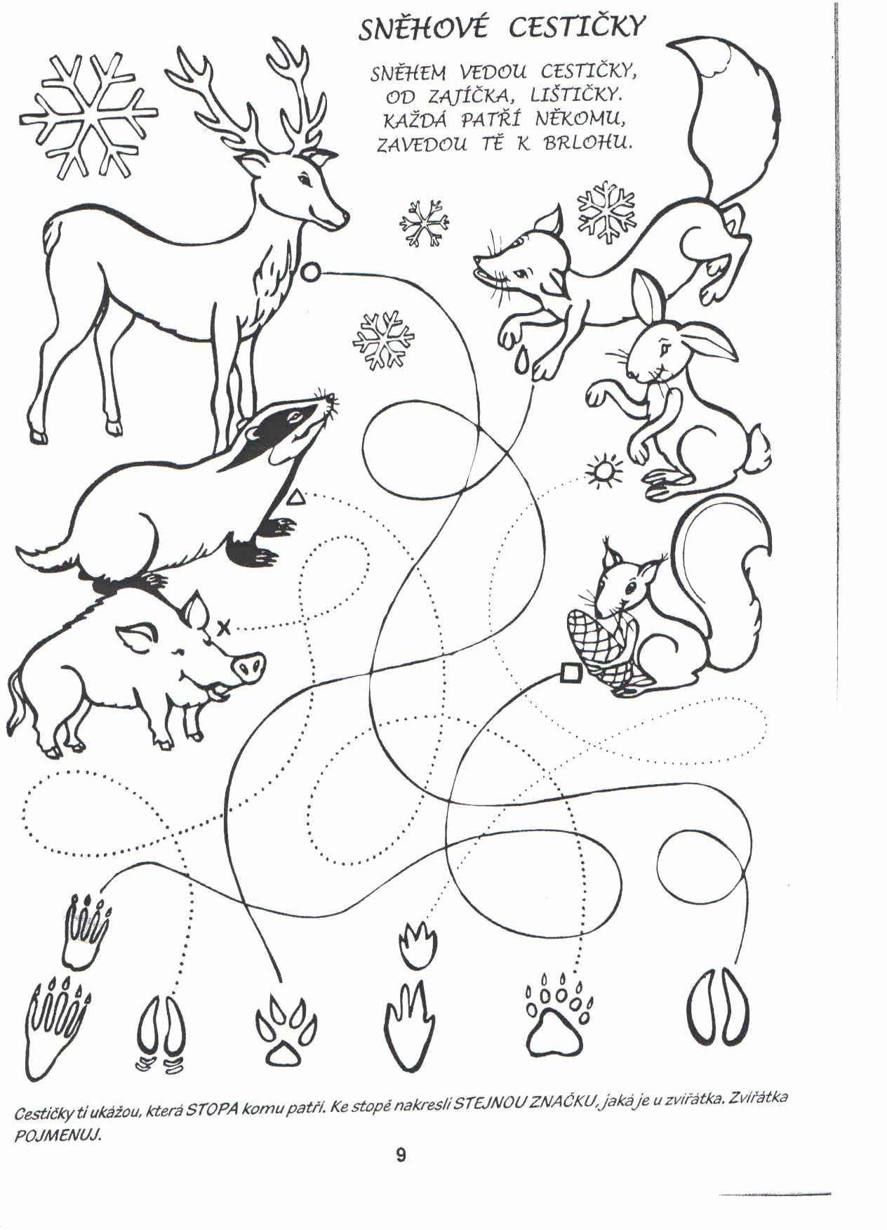 Science Coloring Pages For Kindergarten In