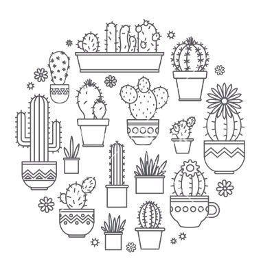 Фотография | Suculentas | Pinterest | Diseños para bordar, Pizarron ...
