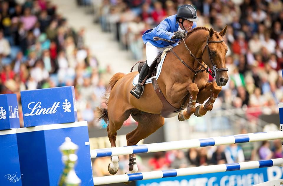 Gerco Schroder & London compete for the Netherlands at the 2013 CHIO Aachen Horse show.  Noelle Floyd