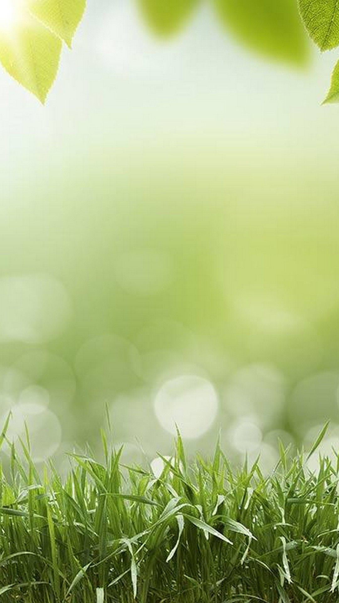 List of Great Green Phone Wallpaper HD Today by Uploaded by user