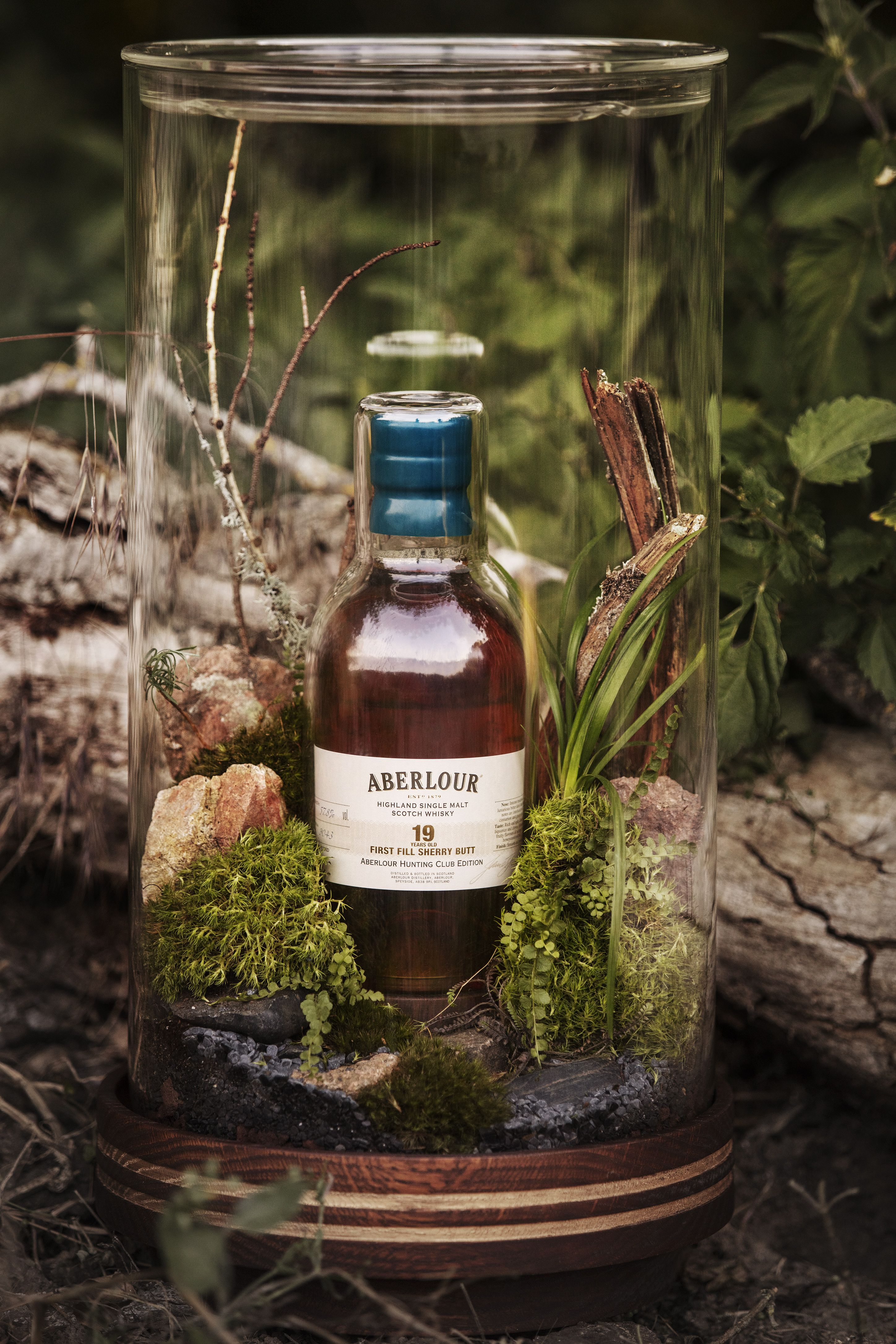 Beautiful Terrarium for Aberlour by Guillaume Demont | /open | Pinterest