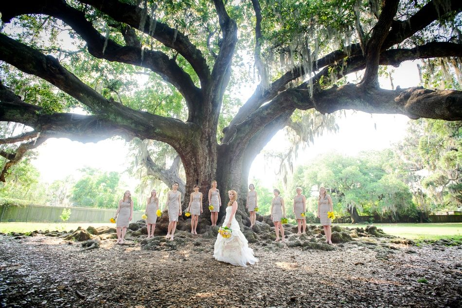 The Bride And Her Bridesmaids Pose For A Photo Under The