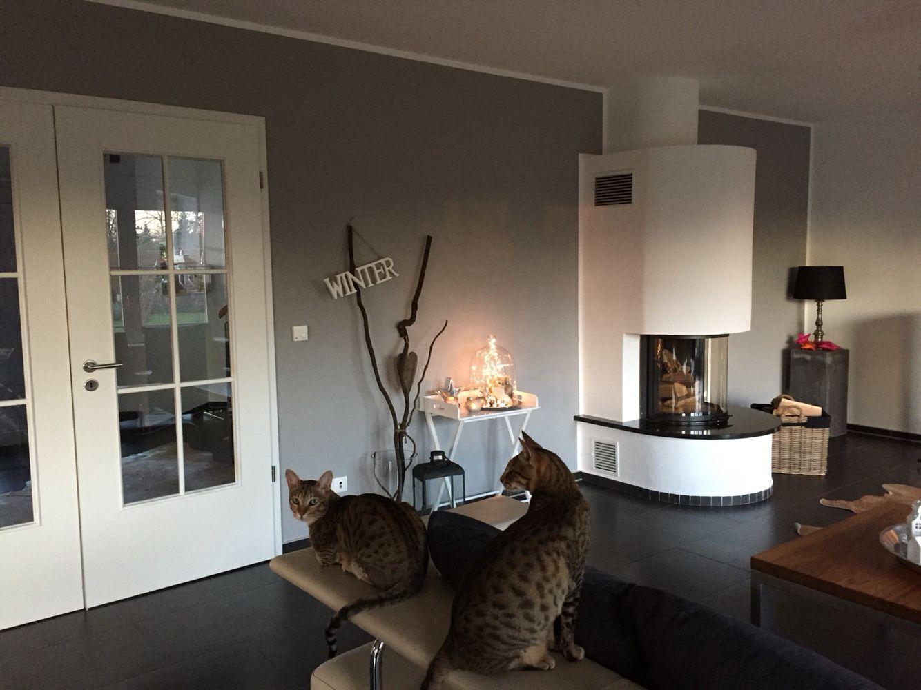 alpina feine farben no 02 nebel im november mit savannah chuma cleo alpina feine farben no. Black Bedroom Furniture Sets. Home Design Ideas