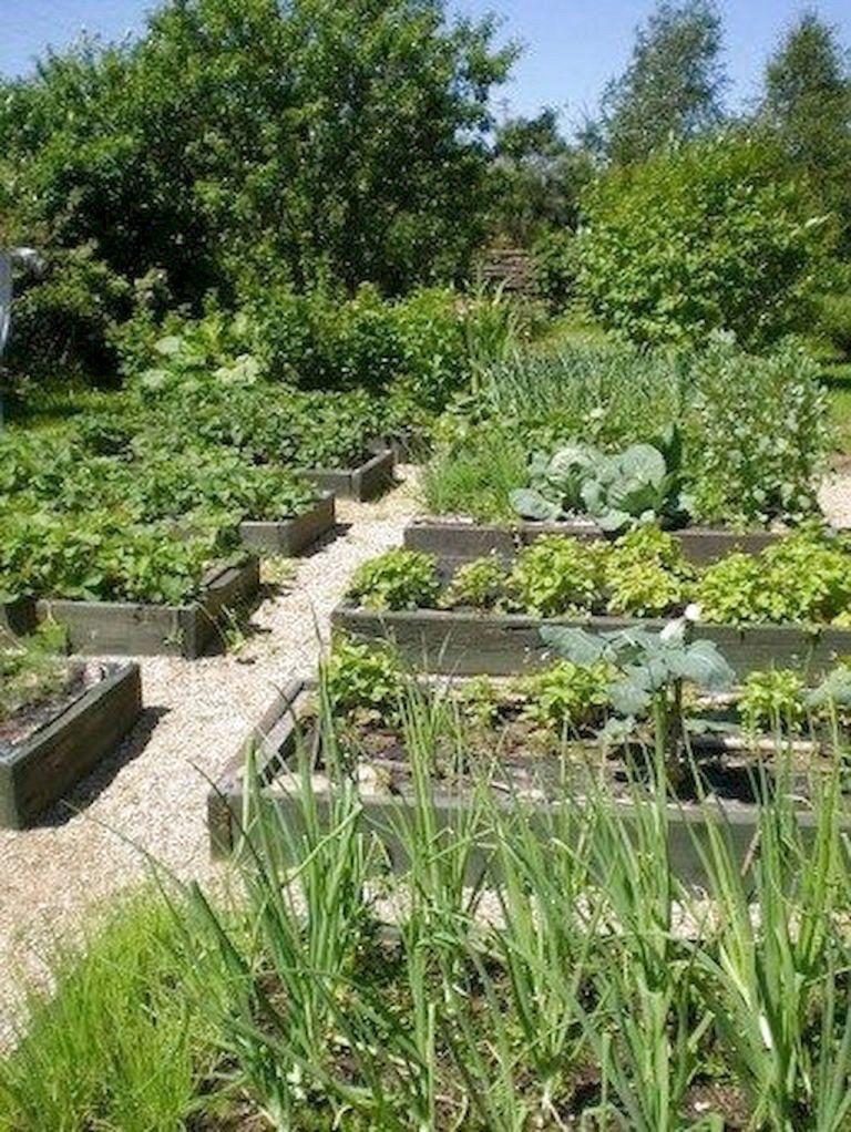 40 Best Diy Design Ideas For A Vegetable Garden Diyvegetablegardendesignideas H Small Garden Landscape Backyard Vegetable Gardens Vegetable Garden Design