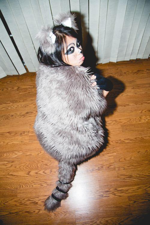 Diy raccoon costume with printable mask raccoon costume costumes diy raccoon costume solutioingenieria Gallery