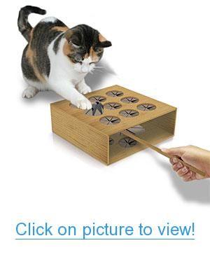 office pet ideas. Cat Whack A Mole Home #Office #Pet #Accessories Office Pet Ideas O
