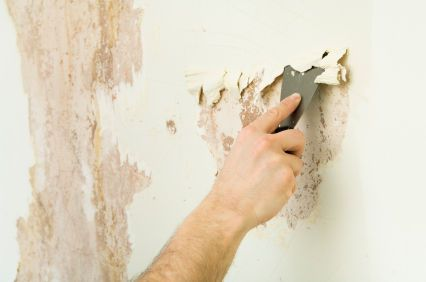 Removing Wallpaper Stripped Wallpaper Removable Wallpaper Wallpaper Paste