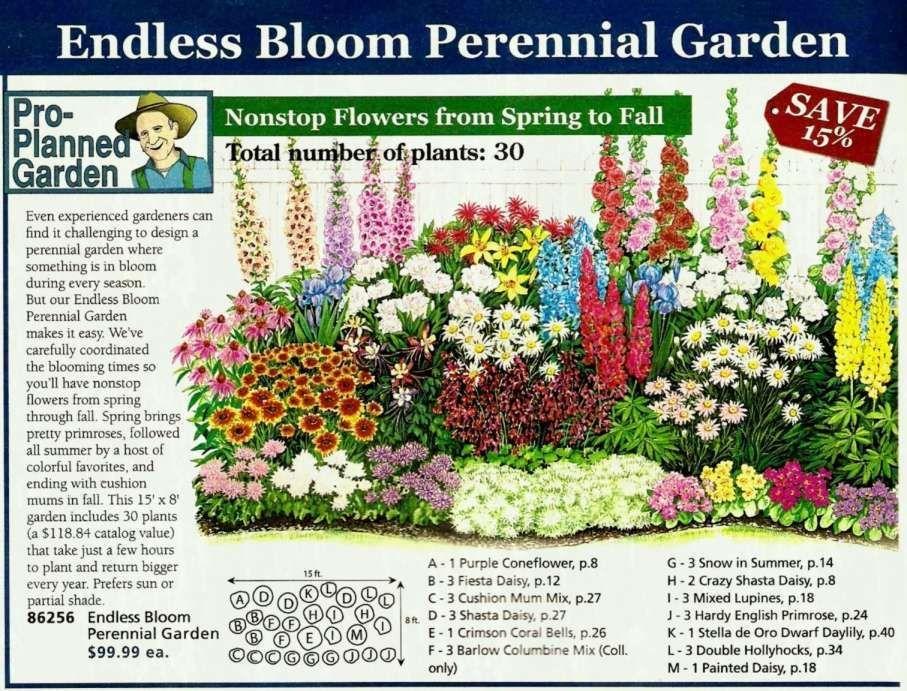 Pin By Lorraine Mcbride Hancock On Landscape Low Water Gardening Perennial Garden Design Garden Planning