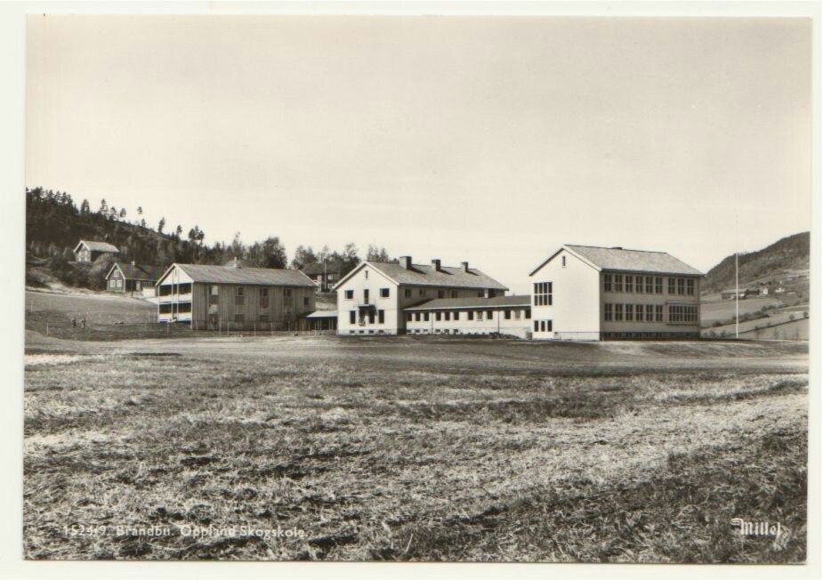 Oppland fylke Gran kommune  Brandbu. Oppland Skogskole. Utg Mittet