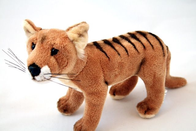 I Want One So Bad Tasmanian Tiger Thylacine Bocchetta