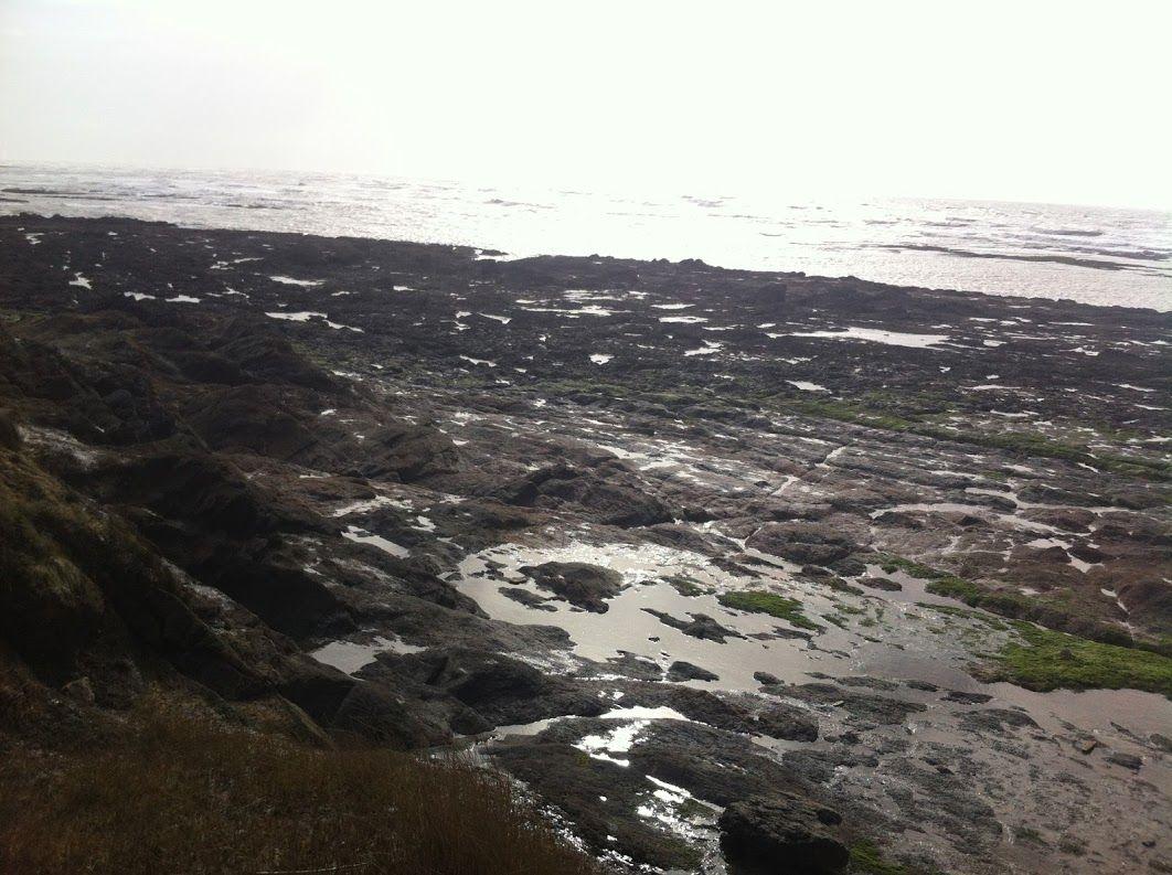 Camping l'Orée de l'Océan vendee - Google+
