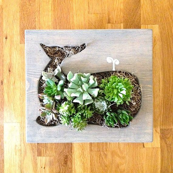 Whale Shaped Succulent Vertical Garden by LoliviaGifts on Etsy, $65.00
