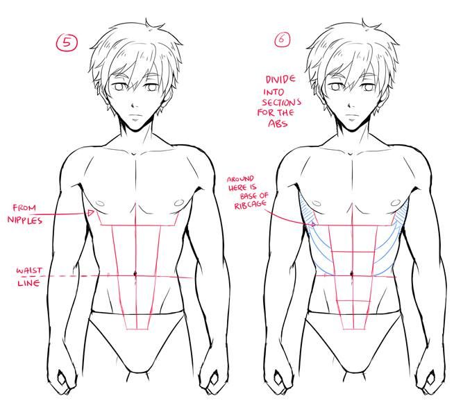 Pin by Noor on anime boy | Pinterest | Anatomy, Anime and Drawings