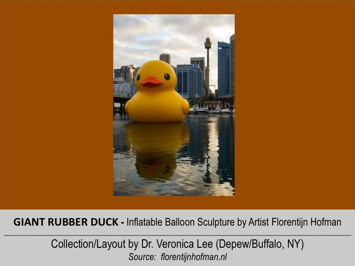 Pin by Dr. Veronica Lee, DNP on ,| GIANT RUBBER DUCK | Pinterest ...