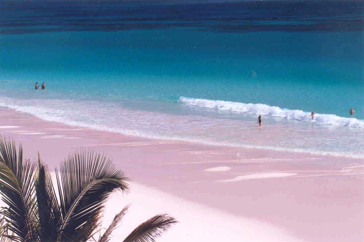 Harbour Island Bahamas Pink Sand