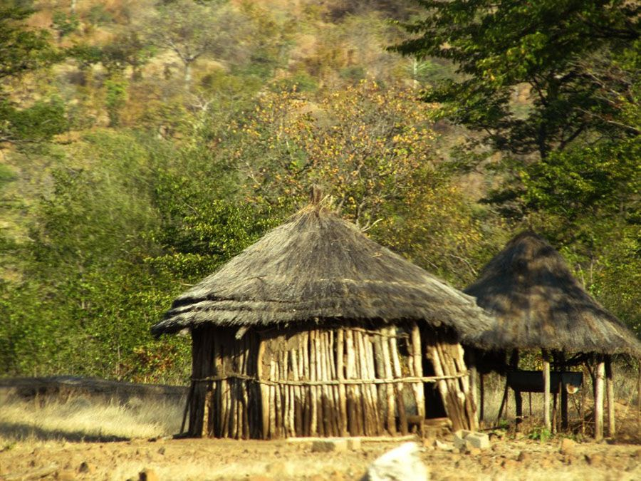 Zambia Structed Constructed With Wood Branches And Thatch