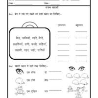 Geometry Proof Worksheet Pdf Language Hindi Worksheet  Singular Plural In Hindi  Free Hindi  Wedding Worksheets Pdf with Protein Synthesis Worksheets Language Hindi Worksheet  Singular Plural In Hindi Trace And Color Worksheets Word