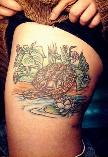 {title} (avec images)   Tortue tatouage, Modele tatouage, Tatouage de tortue de mer
