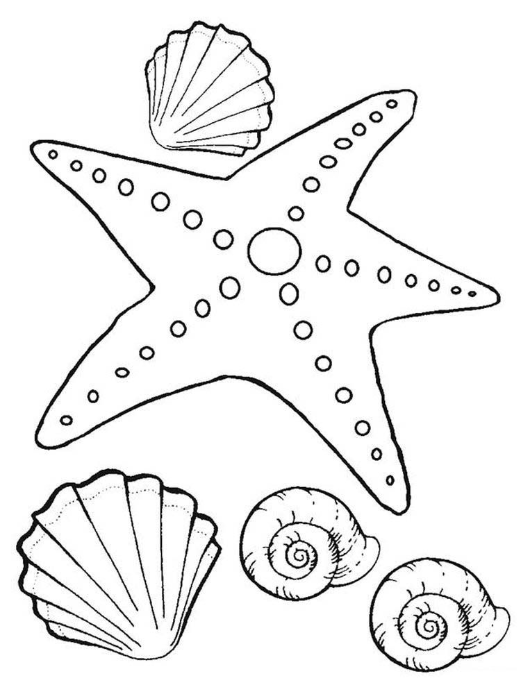 Starfish Coloring Page Starfish Are Invertebrates That Live In The Sea With Postures Resembling Stars O In 2020 Fish Coloring Page Fish Printables Star Coloring Pages