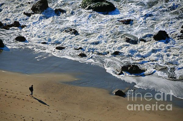 San Francisco 4 Photograph by Bob Stone - San Francisco 4 Fine Art Prints and Posters for Sale