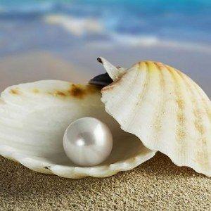 """""""Una perla es… una herida sanada por el amor"""""""