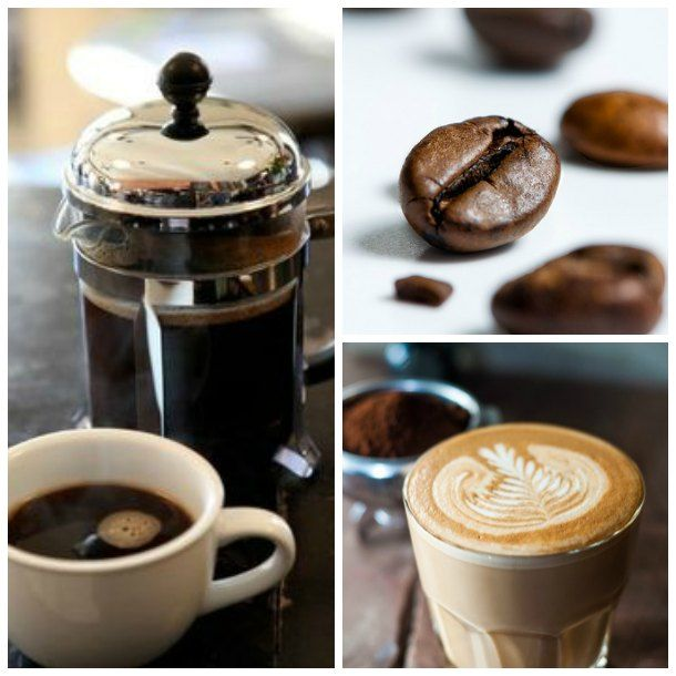 TSG Tampa: Buddy Brew Coffee at The Oxford Exchange