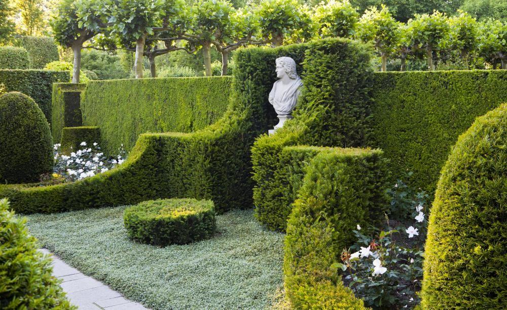 Den garten mit hecken gestalten gartengestaltung und - Gartengestaltung wand ...
