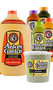 Arden S Garden 21 Day Turn Around Diet Drinks Diet Breakfast Recipes Diet Food List