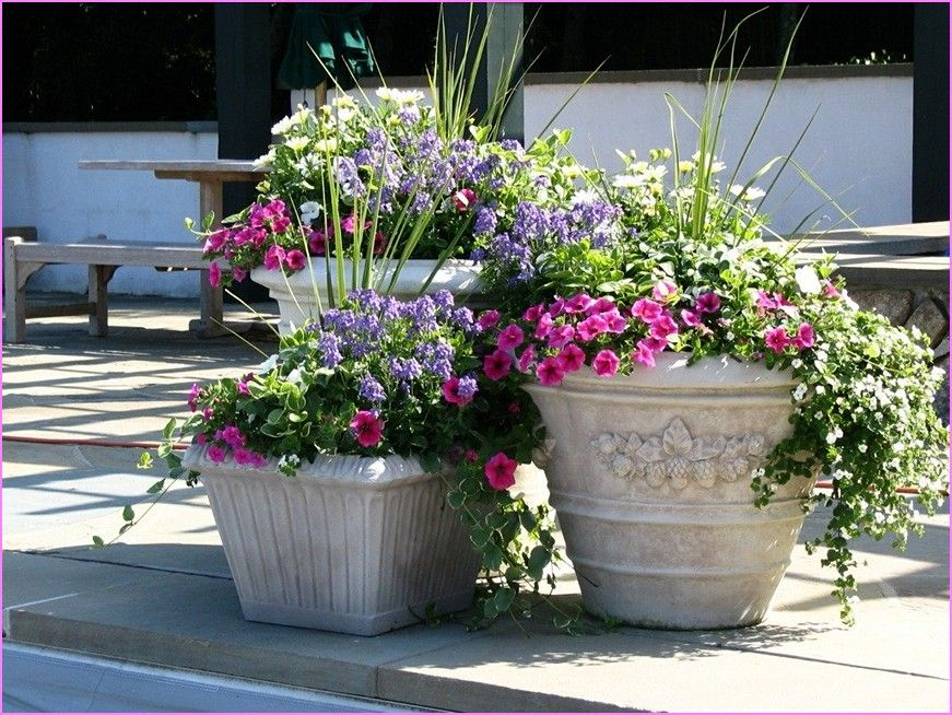 Tall Outdoor Planter Pots Ideas Gallery Tall Outdoor Planters And How To Benefit From Them Beau Flower Pots Outdoor Potted Plants Outdoor Patio Flower Pots