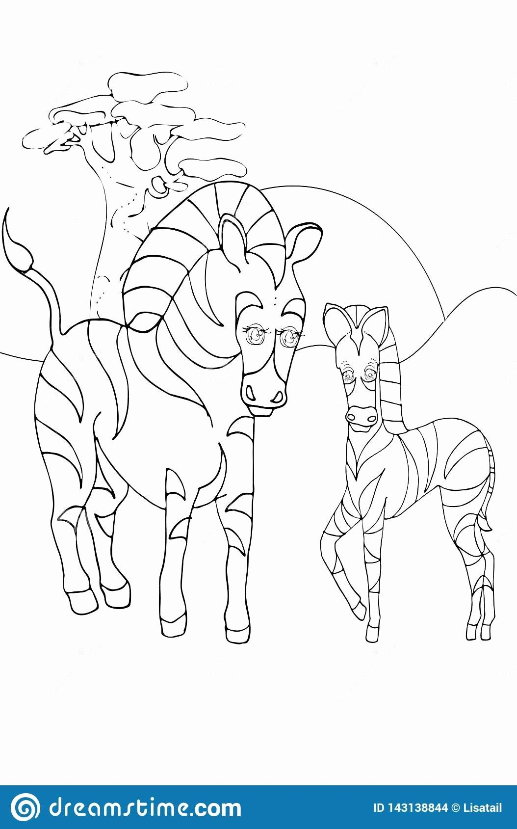 Coloring Pages For Kids Animals Awesome Coloring Children Animals And Children Animals Zebra Stock In 2020 Zebra Coloring Pages Baby Zebra Animal Coloring Pages [ 1689 x 1054 Pixel ]