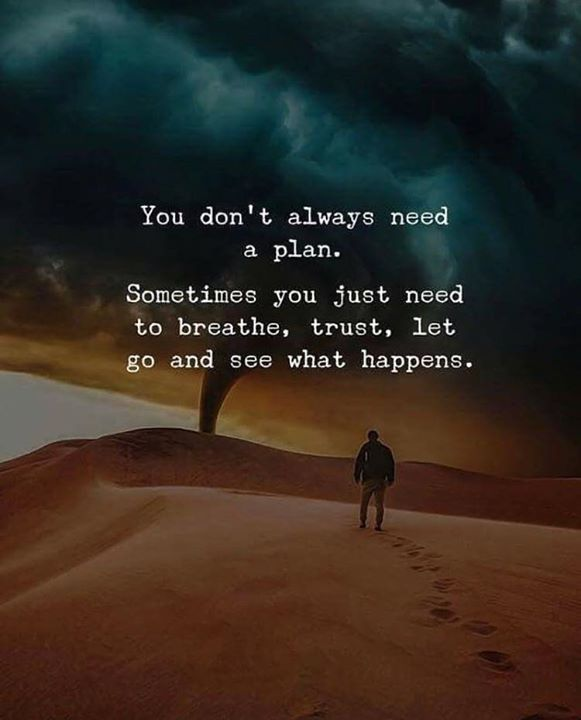 Inspirational Positive Quotes :You dont always need a plan..