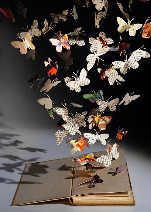 miluju motýlky