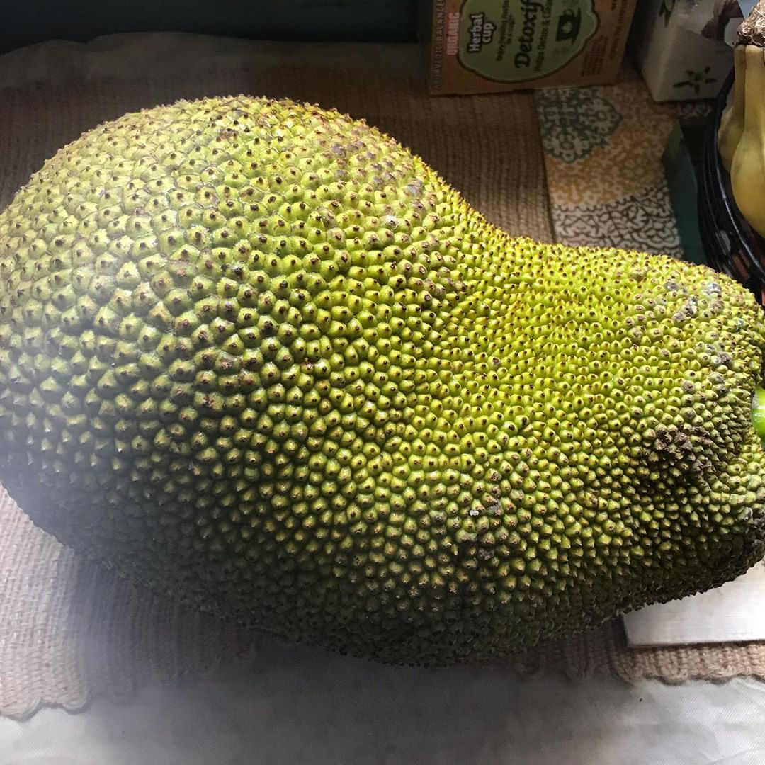 Bought a 10 pound jackfruit at Viet Hoa Market in Midtown. Took me dang near 30 minutes to cut a 1/4 of it, remove the seeds and the meat.  I later learned that I need to place it, uncut, in a plastic bag with ripened bananas for about a day to speed up the ripening process.  A 1/4 of it almost filled this entire bowl. It's taste is similar to a slightly sweet cantaloupe.  The plan is to cook up some BBQ jackfruit sliders with a cilantro lime slaw and fresh tomato slices.  But I'm so tired f #cilantrolimeslaw