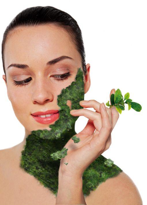 A gyógynövények már az otthoni kozmetikában is hódítanak..
