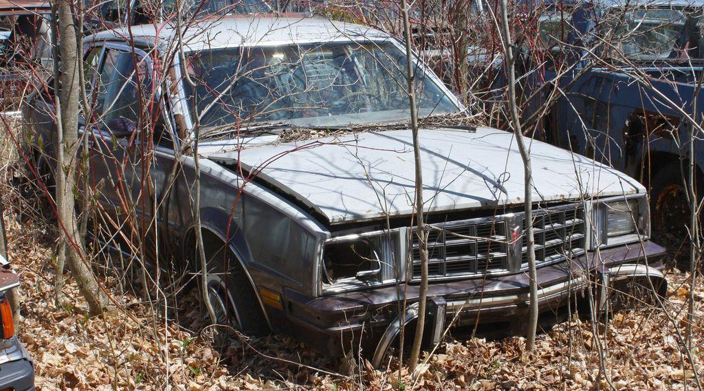 1980 Phoenix 4 door hatchback Pontiac phoenix, Abandoned