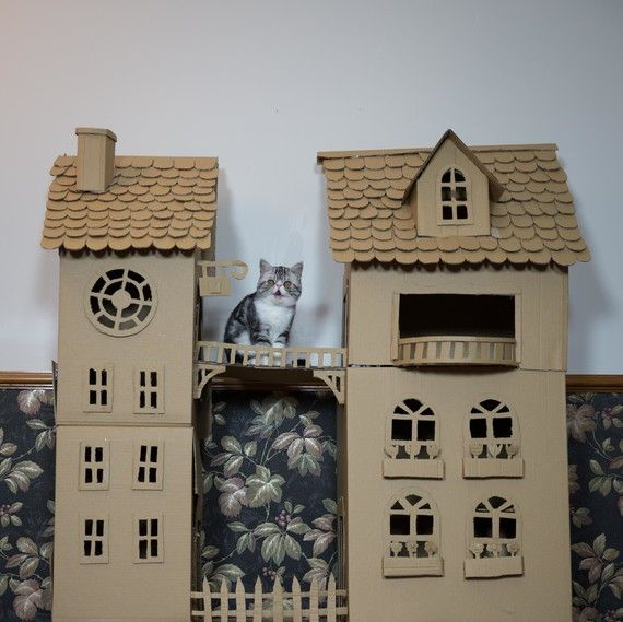 This Crafty Pet Owner Made Her Cat A Castle Fit For A Prince Cardboard Cat House Cat Castle Cat House Diy