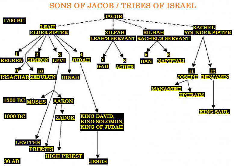 12 tribes of israel today | Jacobs+Generation+(Tribes+of ...